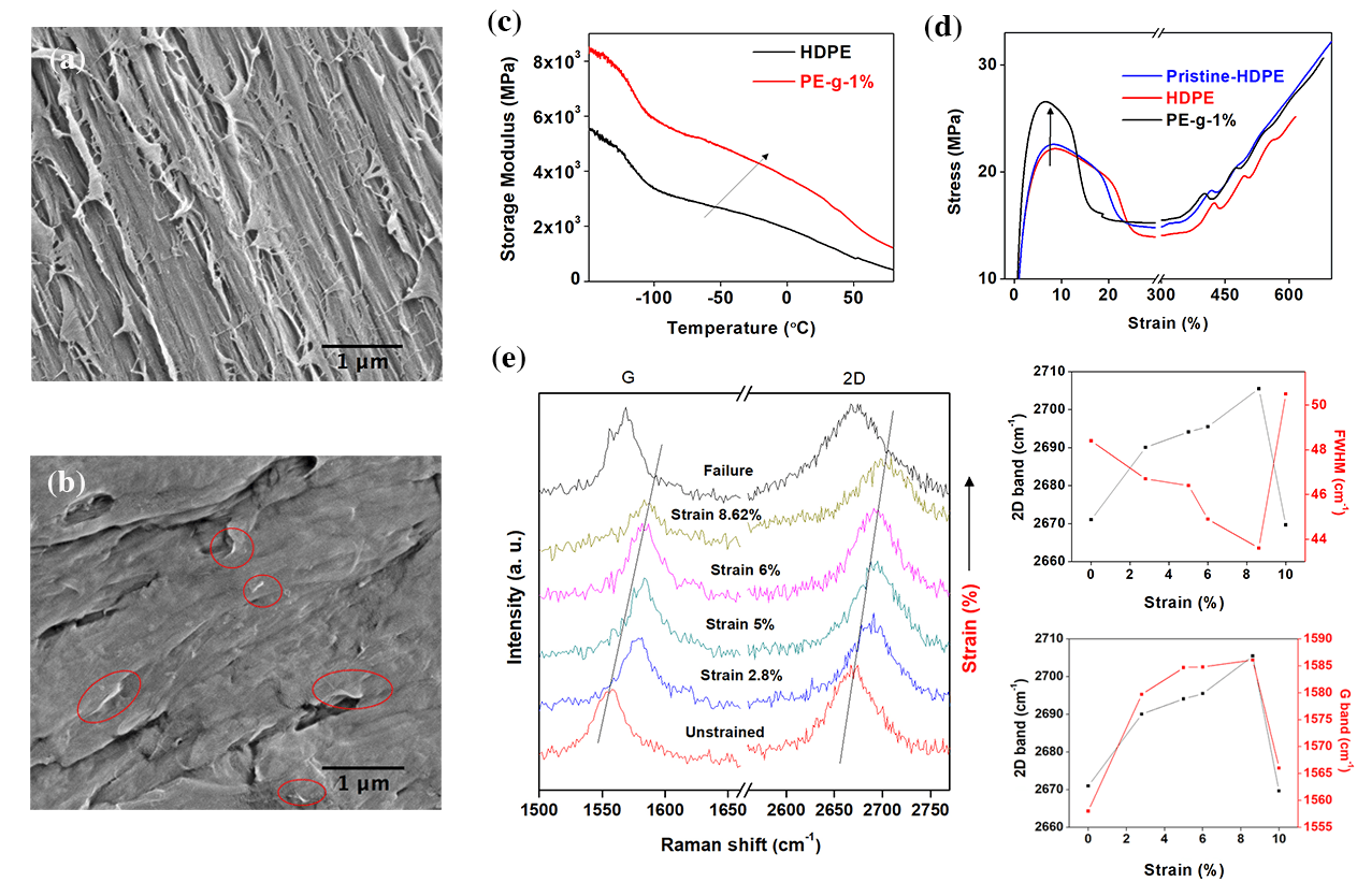 Figure 2. Assessment of the interfacial adhesion strength between graphene sheets and polymer matrix. SEM images of a cross-section fracture surface from (a) neat multimodal-HDPE and (b) PE-g-1%. (c) Dynamic-Thermomechanical Analysis (DTMA) of the neat multimodal-HDPE and PE-g-1%. (d) Tensile stress-strain curves for the pristine multimodal-HDPE (nonextruded), neat multimodal-HDPE (extruded), and PE-g-1%. The pristine polymer is the powder polyethylene. (e) Shift with strain of the 2D and G Raman bands of the graphene during deformation upon PE-g-1% nanocomposite (Laser excitation energy 2.33 eV). The corresponding 2D and G Raman shifts as a function of applied strain are shown in the two graphs on the right.