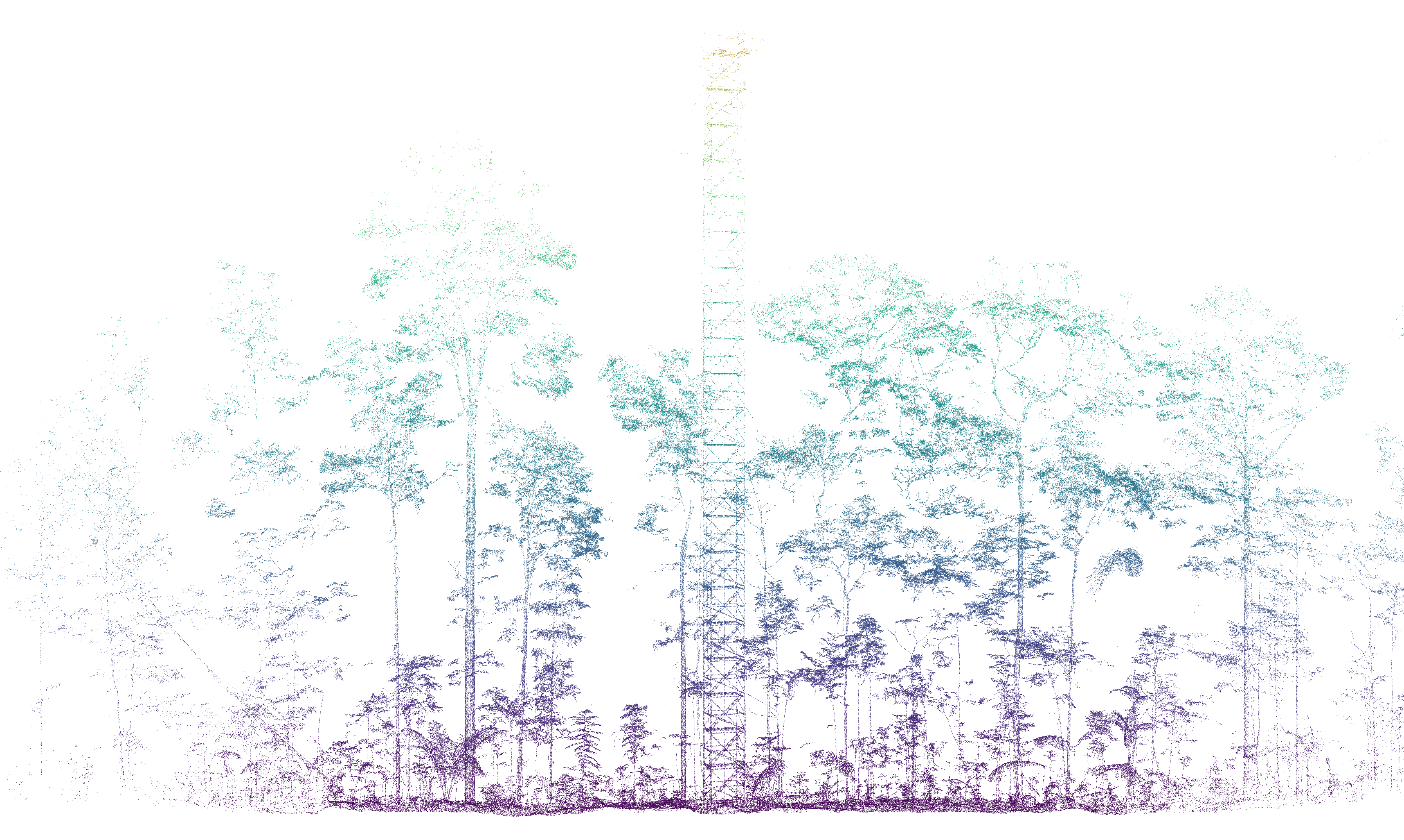Example imagery of a terrestrial light detection and ranging campaign conducted in eastern-central Amazonian terra-firme forest