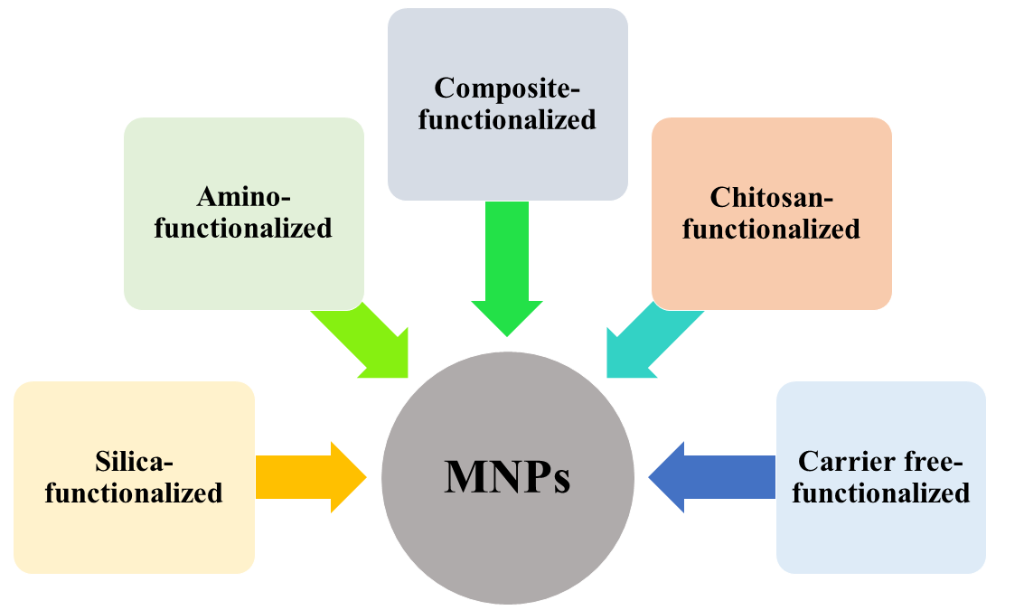 An overview of functionalized-MNP by different methods.