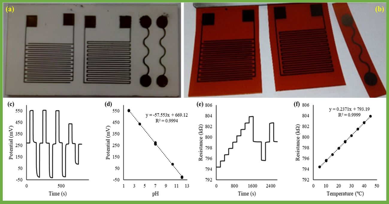 Design, fabrication and performance (testing results) of RuO2 thin-film based electrodes